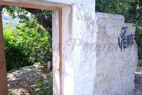 0 habitaciones Terreno en venta en Canillas De Aceituno