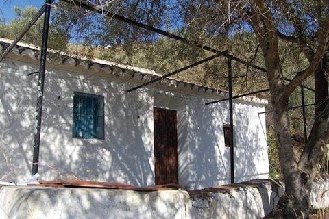 0 habitaciones Finca en venta en Canillas De Albaida