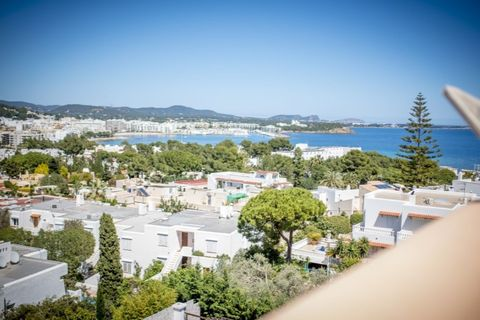 16 bedrooms Apartment for sale in Siesta