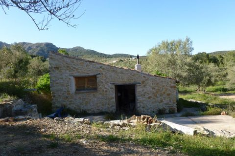 1 bedroom Farm house for sale in Tortosa