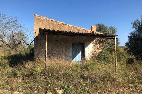 0 bedrooms Finca for sale in El Perello