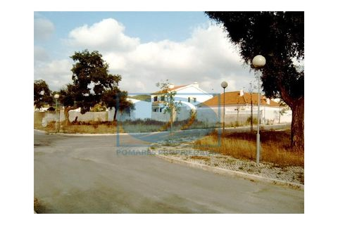 0 chambres Terrain à vendre dans Quinta do Conde
