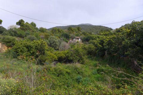 0 Schlafzimmer Grundstück zum Kaufen in Alhaurin El Grande