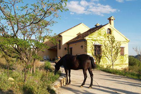 4 habitaciones Casa de campo en venta en Carratraca