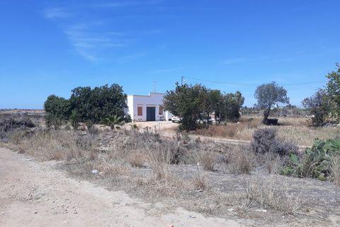 16 chambres Maison à vendre dans Olhao