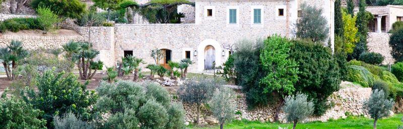 Olive Island Properties omslagsfoto